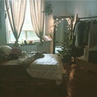 Downtown Bachelor Available Mid-December to Late January