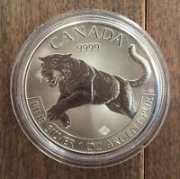 TODAY ONLY: Tubes 25oz Canadian silver maple bullion coins