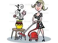 Experienced cleaner with own transport