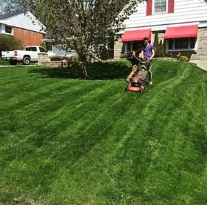 Milners lawn care . Fall clean ups . Yard clean ups.  Kawartha Lakes Peterborough Area image 5