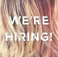 LOOKING FOR EXPERIENCED HAIR STYLISTS full and part time!