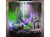 Fluval Edge 46 litre fish tank aquarium