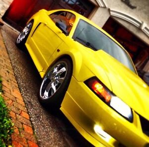 Mint condition 2002 mustang 80km