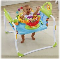 Learn to Walk Jumperoo