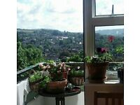 Swap: 2 bedroom in Bath swap for your 2 bed South Bristol