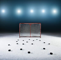 Beginners to hockey we want you