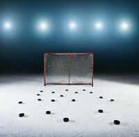 Barrie adult hockey league low to average level fall / winter
