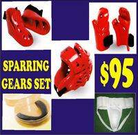 TAEKWONDO SPARRING SET, SAVE 70% ON ALL MARTIAL ARTS SUPPLIES