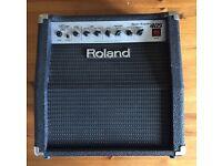 Roland 405 Amp