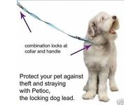 Brand New In Box - ANTI THEFT Security LOCKING Dog Lead - Blue Size M/L