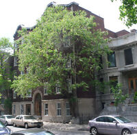 OPEN HOUSE Sunday April 26 for 1 Bedroom Near Guy, Concordia