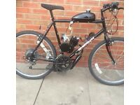 Peddle and pop for sale not mini dirt bike not mini pitbike