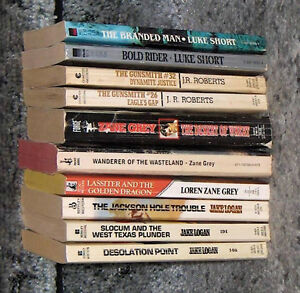 Lot of 10 Assorted Western Pocket Novels