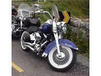 Windvest Wndscreen for Harley Davidson