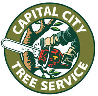 TREE REMOVAL, TREE PRUNING, STUMP REMOVAL, WOOD CHIPPING