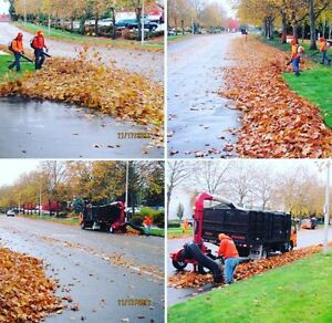 We do fall clean ups. Milners lawn care. Property maintenance.  Kawartha Lakes Peterborough Area image 1