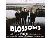 Blossoms tickets for castlefield bowl