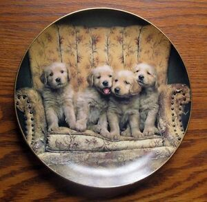 Golden Retriever Collector Plate