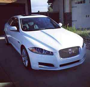 2014 JAGUAR XF TURBO **WARRANTY PROTECTED**