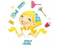 Quality domestic cleaner - South Woodham Ferrers aera