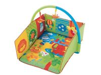 2 in 1 play gym and matt