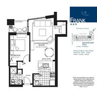 Downtown new luxury condo - lebreton flats (parking available)