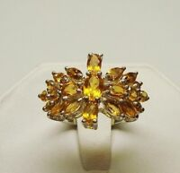 Valentines Present! 3.26 Ct Citrine Ring Appraised at $450
