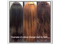 Free colour change at Toni & guy academy.! Urgent !