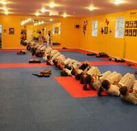Inner Strength Taekwondo Academy -Classes age 3 an up