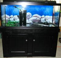 Aquarium 75gal 4pied 48poX19X22 equipé filtreur et+