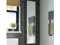 Large mirrored bathroom cabinet