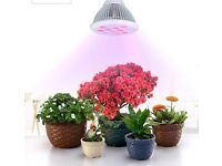 Plant Grow Lights (indoor garden plants)