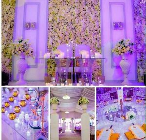 WEDDING & PARTY DECOR FOR ALL OCCASIONS!! Kitchener / Waterloo Kitchener Area image 2