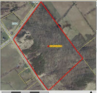 50 ACRES NAPANEE AREA