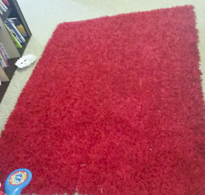 Red shag rug Aberglasslyn Maitland Area Preview