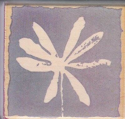 """star flower petals hero arts Wood Mounted Rubber Stamp 2 x 2"""" Free Shipping"""