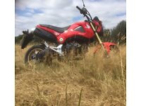 Honda MSX 125 - GROM - as new condition with only 395 miles