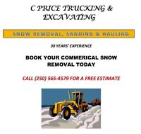 Snow Plowing, Sanding and Removal 30+ years experience
