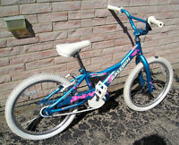 "Bicycle 20"" Raleigh girls, Professionally refurbished."