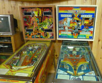 Totem pinball or Night Rider pinball