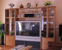Adjustable Entainment wall-unit