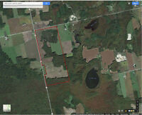 292 Acres of Farmland, 146 Acres Workable, 146 Acres Treed