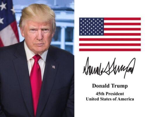 DONALD TRUMP President American Flag 8 x 10 Photo Print Poster USA