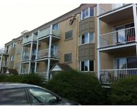 Nice 31/2 good location in longueuil available now