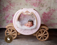 Newborn Photography Session in south side studio