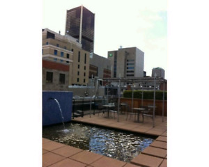 Beautiful 3 1/2 Condo Old Montreal Furnished or not furnished