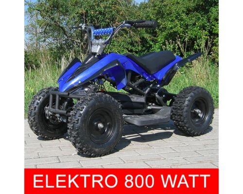 elektro 800w atv kinderquad pocketquad miniquad racer quad. Black Bedroom Furniture Sets. Home Design Ideas
