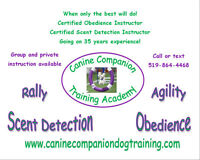 New Basic Obedience Course Starts July 22nd in Sarnia!