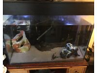 4foot tank and stand and fish included