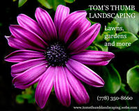 Tom's Thumb Landscaping (Lawns, Gardens and more)